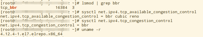 check_tcp_bbr_open